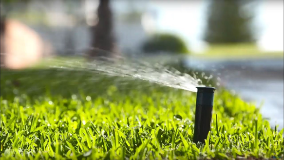Ways to save water in garden reticulation
